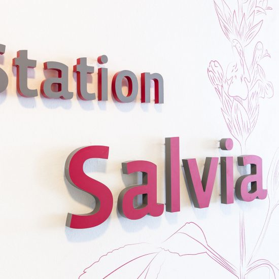 Station Salvia als 3D Element
